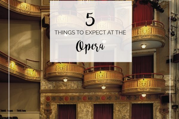Top 5 Things to Expect at the Opera | opera newbies